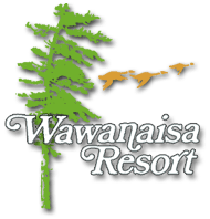 wawanaisa-logo